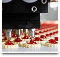 Emergency Automation System Repair & Upgrade Services for the Food Industry